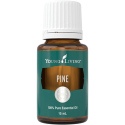 Borovice (Pine) 15 ml